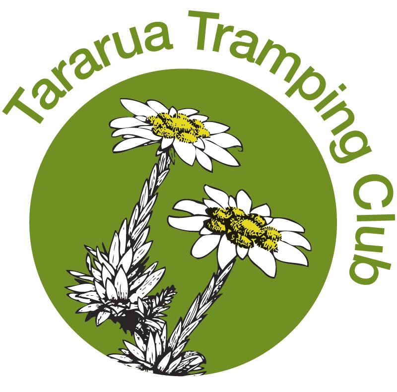 Option 1c Revitalisation of current logo official