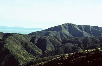 Outlook Hill, 537 m, Terawhiti Station, photograph by Barbara Mitcalfe