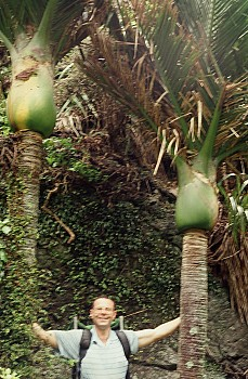 Gary James with two nikau, 'Breakneck Creek', photograph by Barbara Mitcalfe